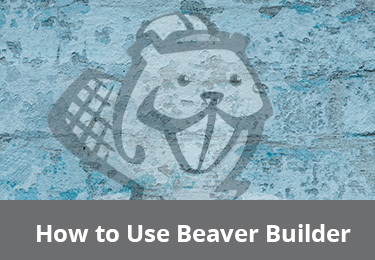 DTI-BeaverBuilder-Course